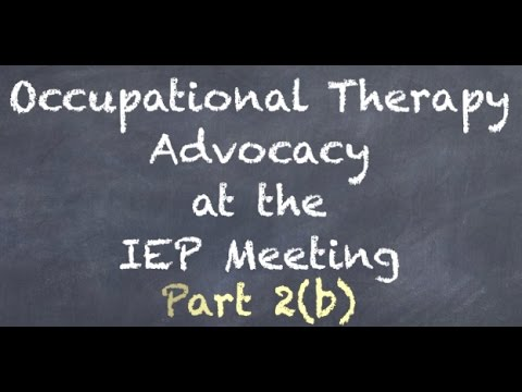 OT Advocacy Meeting Part 2 (b)- Team Dynamics